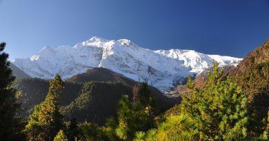 Medzinárodný deň hôr